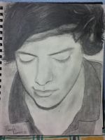 Harry Styles by StormPainter