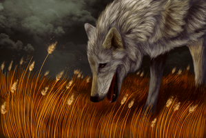 The Coming Storm by chillingbreathofdawn