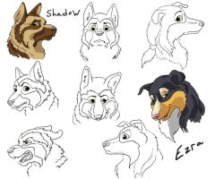 """""""The Order"""" character sketches by SilverFlight"""
