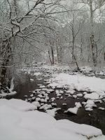 calm icey brook by chickiedee