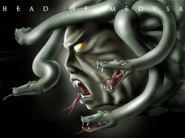 HEAD OF MEDUSA by husseindesign