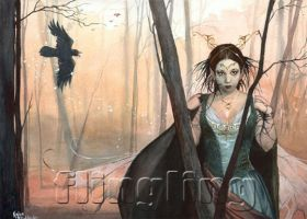 Raven-faery by Flingling