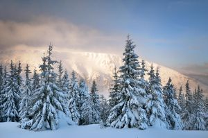 Karkonosze Mountains no113 by PawelJG