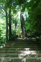 Stairs - Green Nature by Ali-SR
