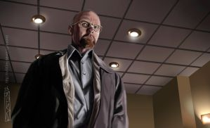 Walter White Breaking Bad - Season 5 by RV5T3M
