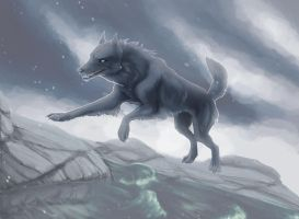 Lone wolf by UniQuest