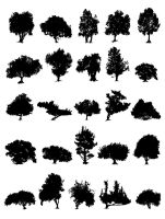 Tree Silhouettes by lesliesketch