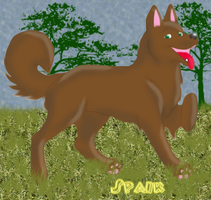 brown dog by Spaik-The-Best-777