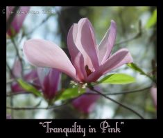 Tranquility in Pink by EdtheHobbit