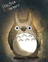 Totoro by skysdlimit