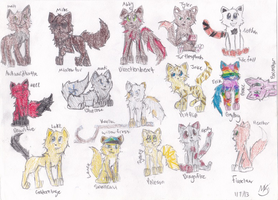 Me and My Friends- Warrior Cats Style by Dawnfire2025