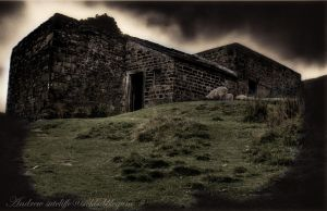 Wuthering heights-Top Withins by MANIACGFX