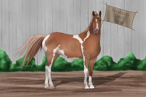 PSH Import 031 by RvS-RiverineStables