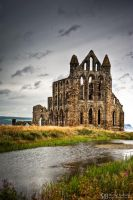 Whitby Abbey and pond by Yupa