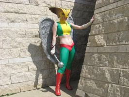 Hawkgirl Costume 2 by msventress
