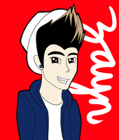 One Direction: Zayn by StupidClue