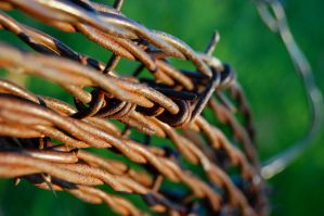 Barbed Wire by MechaPixie