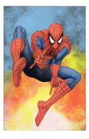 SPIDERMAN by DONAHUE-t