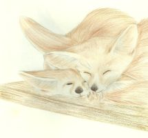 Fennec foxes cuddling by Ciarrenn