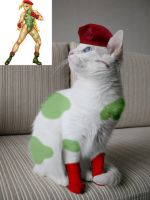 Cammy Cat by electric-goldfish