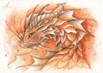 Brown forest dragon by AlviaAlcedo