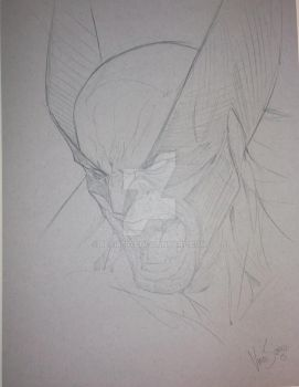 Wolverine by Vince Sunico by Beamer72