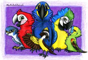 Parrots' Land by MadinkaClaireC
