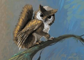Squirrel-owl griffin concept by csgirl