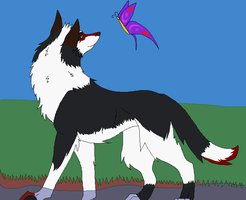 The wolf and the butterfly by akchrome
