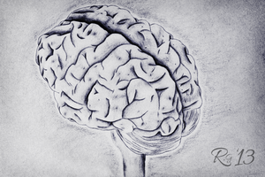 The Human Brain by RicGrayDesign