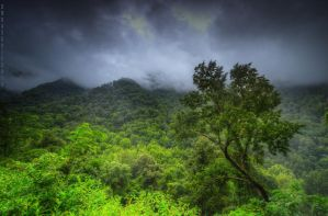 Moody in the Mountains by Blaklisted