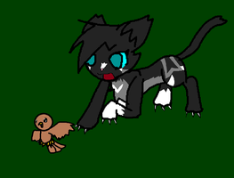 Duskpaw Hunting WUT by PalmTreeFromHell