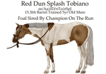 Pregnant Mare Adopt 4 - SOLD by FallbrookeEC