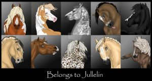 The collection by Jullelin