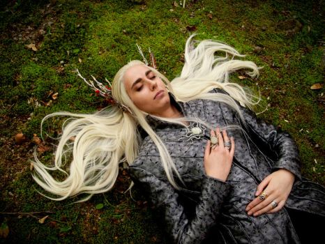 Thranduil Cosplay - One with the forest by Abessinier