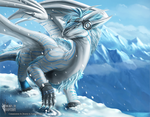 Cold Stare by Bluehasia