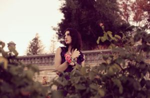 Ash in the rose garden by fae-photography