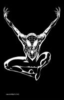 Ultimate Spider-Man Pinup (BW) by davidmarquez