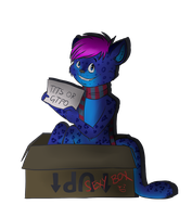 I got my box back by Kirlikea