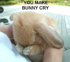 you make bunny cry by DiscipleofSpoon