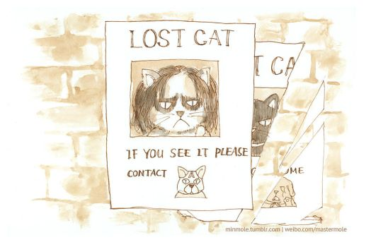 Captain America 2 LOST CAT by min1919