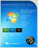 Wallpaper 7 Box - Pack 1 by CaHilART