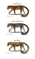 More Free Cougar Hybrid Adopts - Adopted by Feralx1