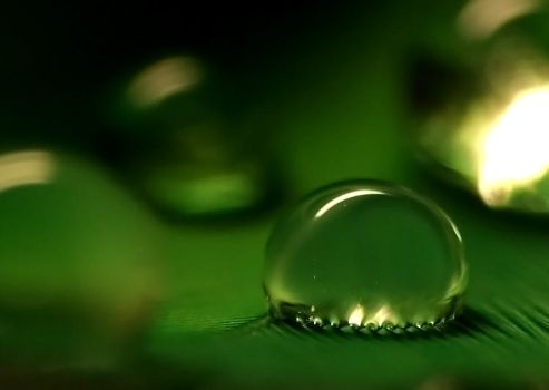 droplet...1 by Freeq22
