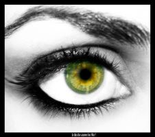 Picture in an Eye Tutorial by F3rk3S