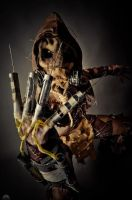 Scarecrow cosplay 3 by ERINAND