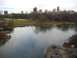 Central Park by Macile