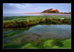 Bamburgh Castle III by Colin-Moore