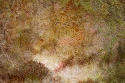 Texture 61 by Sorbumina