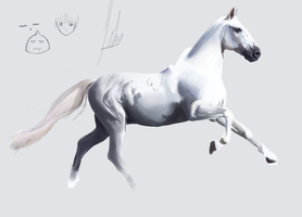 Horse Painting - WIP by Tokratan
